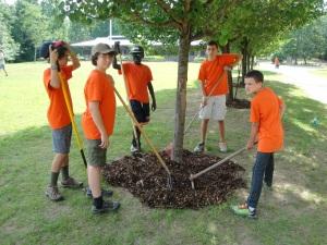The mulch spreading team